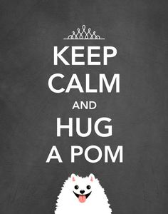 Keep Calm And Hug A Pom - #pomeranian Art Print