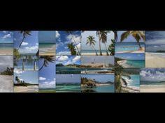 Vidéo clip #MartiniqueToute la diversité de l'île de la Martinique en 4 minutes de voyage... Découvrez son patrimoine, sa diversité de paysages, ses plages de sable blanc ou noir, les jardins tropicaux (Balata), la culture... Visitez les bourgs typiquement créoles de Sainte-Anne, Sainte-Luce ou Grand'Rivière, et bien d'autres encore.