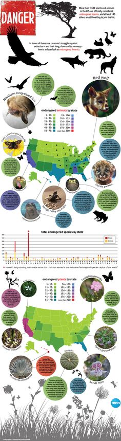 Which U.S. states have the most endangered species?