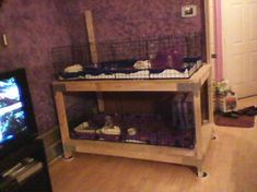 Click image for larger version. Name: 0829122109 Views: 1307 Size: KB ID: 33309 Ferret Cage, Pet Cage, Guinie Pig, Small Animals, Hamsters, Snowball, Pet Stuff, Pets, Peaches