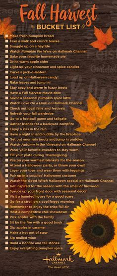 Celebrate the fall season with Hallmark Channel! Get the full list of bucket list activities, perfect for making the most of autumn with your family and friends.