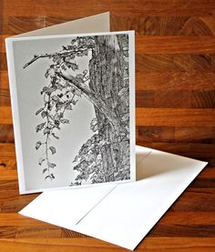 BLANK PHOTO NOTECARD 5x7 / Tree and Leaf Study 4 / by PhotoClique, $3.50