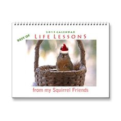 SOLD! Best of Life Lessons Squirrel Calendar 2015 by FunNaturePhotography. #squirrels #AnimalCalendar #FunnyCalendar http://www.zazzle.com/funnaturephotography*