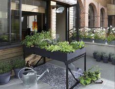 11 Meilleures Images Du Tableau Jardin Jardins Terrasse