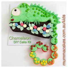 Charlie the Chameleon DIY Cake Kit