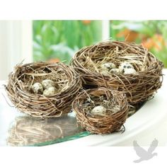 Bird Nests Table Decor (Set of 3 Bird Nests) $16.99