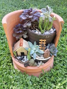 Miniature garden with some succulents...