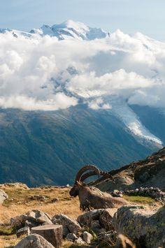 Winter Mountain, Mountain Landscape, Alps, France, Mountains, Nature, Travel, Naturaleza, Viajes