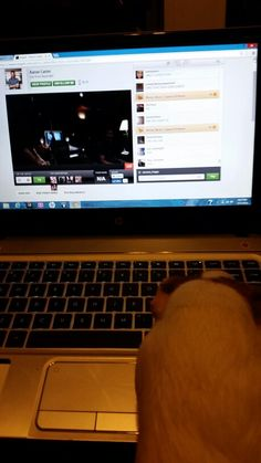 Patches likes Aaron Carter.  She's watching a Stage It Show he did