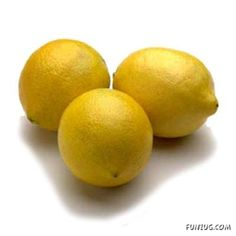 To get maximum juice out of lemons : Soak lemons in hot water for one hour, and then juice them.