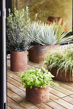 Højbed i stål 65 x 35 cm - rust Outdoor Living, Exterior, Create, Garden, Flowers, Plants, Poster, Outdoor Life, Garten