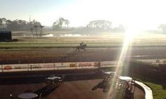 A sunny morning at Tampa Bay Downs!