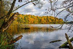 Herbst am Hellsee bei Lanke, Naturpark Barnim