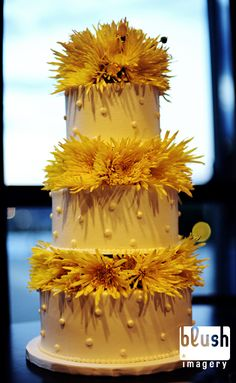 This is a yellow cake!