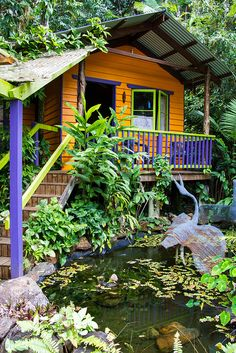 Colorful Forest Cabin. A dream studio with a frog pond out front.