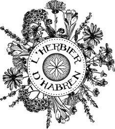 Les rinçages pour sublimer la couleur de tes cheveux - L'Herbier d'Habren Textiles, Impression, Beauty, Green Fabric, Plant Tissue, Natural Dyeing, Herbalism, Fabrics, Beauty Illustration
