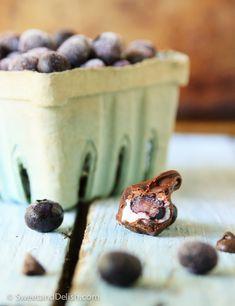 frozen blueberry surprise