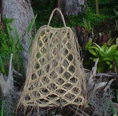 Flax Weaving, Weaving Art, Basket Weaving, New Zealand Flax, Fun Crafts, Arts And Crafts, Cultural Crafts, Maori Designs, French Collection