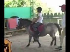 Academia de Ponys para Niños en Colombia- TvAgro por Juan Gonzalo Angel