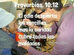 Proverbios, 10:12 - El odio despierta las rencillas; mas la caridad cubre todas las maldades.