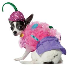 Collar Planet - Cupcake Pet Costume (http://www.collarplanetonline.com/cupcake-pet-costume/) Cupcake Pet Costume makes your pet look like a sugary, delectable sweetie-pie