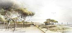 Re-qualification and Redevelopment of the Beach and Seafront of Figueira da Foz and Buarcos Proposal (2)
