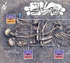 "Neolithic Grave indicates ""Nuclear Family"" who met a Violent Death"