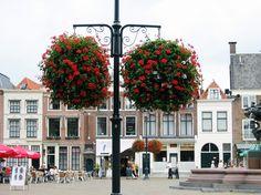 Die hängende Blumenkästen Sifu