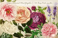 This is the ULTIMATE collection of 100 antique botanical floral graphics. They have been carefully curated from a variety of antique sources, and each has been chosen for their beauty, color, size, an