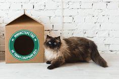 MilkBox — домик для кошки, 99 грн