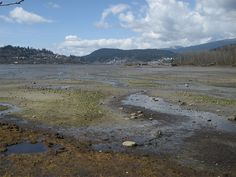 Port Moody Inlet