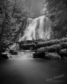 Monochromatic Mist......Gary Randall on Flicker