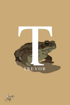 Neville Longbottom's pet toad with a tendency to get lost.