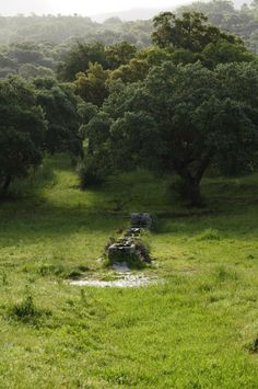Un abrevadero en El Ejido de Villar de Plasencia.