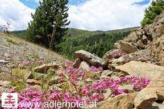 Natur & Wanderregion Nauders am Reschenpass - http://www.adlerhotel.at/region-reschenpass.html