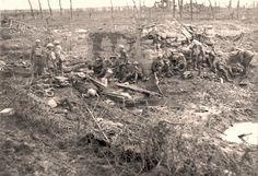 Australische soldaten bij Broodseine België.