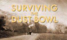 The story of the farmers who came to the Southern Plains of Texas, Oklahoma and Kansas dreaming of prosperity, and lived through ten years of drought, dust, disease and death.    movie and lesson plans