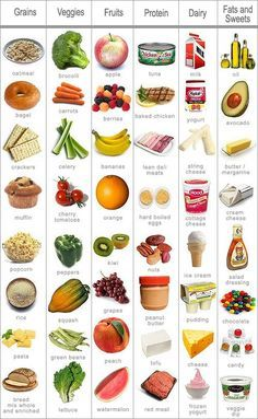pritikin diet safe exercise while pregnant food timetable for how do i lose wei. - pritikin diet safe exercise while pregnant food timetable for how do i lose weight after menopause - Nutrition Activities, Kids Nutrition, Healthy Nutrition, Nutrition Tips, Nutrition Tracker, Fitness Nutrition, Holistic Nutrition, Nutrition Education, Healthy Recipes