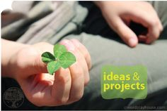 Are 4-leaf clovers real? Find out! St. Patrick's Day activities and projects to explore too!   #St.PatricksDay