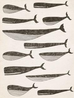 Whalies by Matt Johnson
