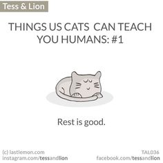 The official Instagram home of Tess and Lion. Web page is www.lastlemon.com/tess-and-lion