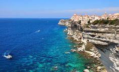 Đảo Corsica với những lùm ô-liu chín mọng