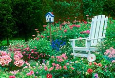 Adirondack chair in riotious garden with hand painted birdhouse.
