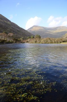 Delphi Lodge, Leenane, Galway, Ireland for some excellent salmon fishing