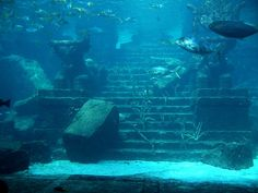 The ruined remains of an ancient city, deep underwater.  (all the myths are true.)