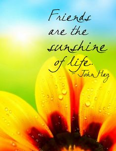 Friends are the sunshine of life #motivationalquotes