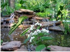 How to Build an Above Ground Pond thumbnail                                                                                                                                                                                 More