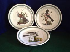 "Set Of Three (3) Portmeirion Green Banded ""Birds Of Britain"" Salad Plates by FindorCollect on Etsy"