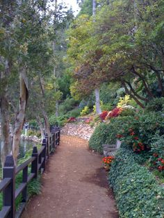 Garden at Lake Shrine in Pacific Palisades