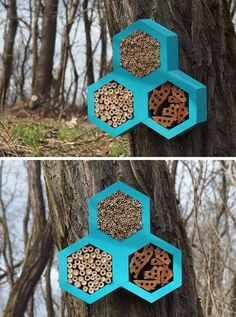 This Bee Hotel takes on a hexagonal shape similar to the shape of honeycomb and creates many hiding places for non-aggressive insects like solitary bees, bumblebees and ladybugs. Patio Design, Garden Design, Shelter, Wood Bird Feeder, Bug Hotel, Birds And The Bees, Butterfly House, Save The Bees, Hotels